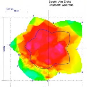Schalltomographie - farbiges Schalltomogramm